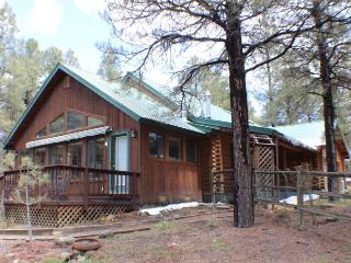 Experience a wonderful Pagosa Springs vacation in this cozy, pet friendly cabin. - Pagosa Springs vacation rentals