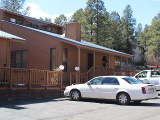 Timbers 3 is a cute and quiet vacation condo in Pagosa Springs. - Pagosa Springs vacation rentals