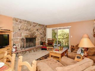 2 bedroom House with Internet Access in Winter Park - Winter Park vacation rentals