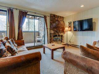 Ski-in/ski-out to American Eagle lift; pet-friendly getaway! - Copper Mountain vacation rentals