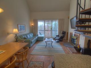 Beautiful Sugarbush slopeside loft condo - Warren vacation rentals