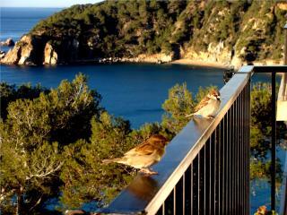 Apartamento con vistas al mar - Tossa de Mar vacation rentals