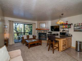 Cozy Studio Condo Inside the Gates of the Park! - Yosemite National Park vacation rentals