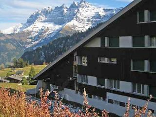 1 bedroom Apartment with Dishwasher in Val D'illiez - Val D'illiez vacation rentals