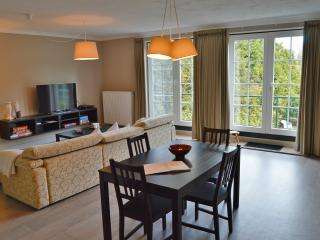 Beautiful 1 bedroom Tongeren Apartment with Internet Access - Tongeren vacation rentals