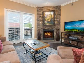 Baskins Creek 105 - Gatlinburg vacation rentals