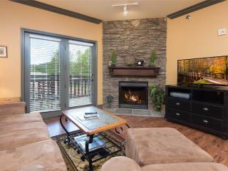 Baskins Creek 109 - Gatlinburg vacation rentals