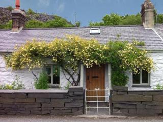 Wonderful 2 bedroom House in Tregarth - Tregarth vacation rentals