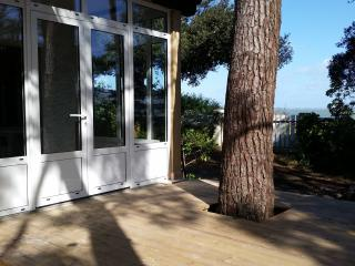 2 bedroom House with Dishwasher in Cap-Ferret - Cap-Ferret vacation rentals