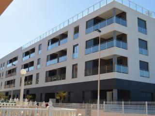 Lovely 3 bed top floor apartment, 1st Line Beach - La Mata vacation rentals