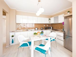 Romantic 1 bedroom Apartment in Timisoara - Timisoara vacation rentals