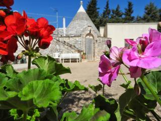 I trulli di zia Rosa (blue) - Martina Franca vacation rentals