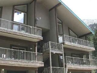 Taos ski in ski out condo sleeps 4 new construction dish washer - Taos Ski Valley vacation rentals