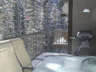 Upscale contemporary condo. Light and bright, 2/10 of a mile to lift - Taos Ski Valley vacation rentals