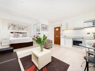 Perfect family flat in Chelsea 8 min tubes museums - London vacation rentals