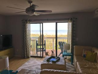 Relax-Ocean Front Open and Relaxing Space. Pets ok - Carolina Beach vacation rentals