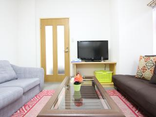 Large house in central Tokyo! Next to subway 16PAX - Itabashi vacation rentals