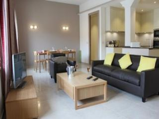 Newly refurbished Three bedroom Apartment - Cannes vacation rentals