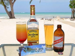 Captain's Cove Beach Resort and Villa - Falmouth vacation rentals