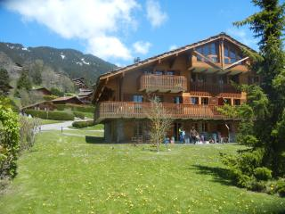 Beautiful mountain chalet apartment - Chesieres vacation rentals