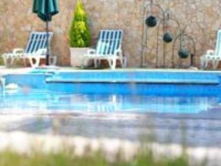 Quintinha da Eira -  Casa Principal toda - Torres Novas vacation rentals