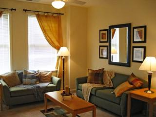 On campus apartment in Chapel Hill - Chapel Hill vacation rentals