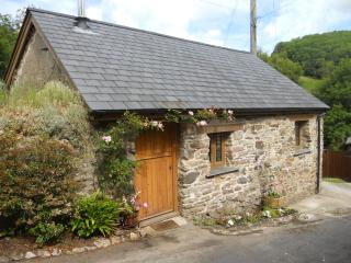 Romantic House with Microwave and Internet Access in Barnstaple - Barnstaple vacation rentals