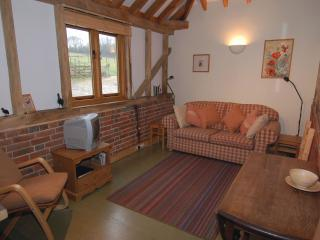 Lovely 1 bedroom House in Damerham - Damerham vacation rentals