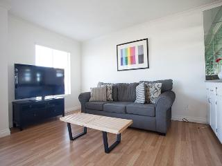 Spacious and Modern Unit steps to Venice Beach Pier - Marina del Rey vacation rentals