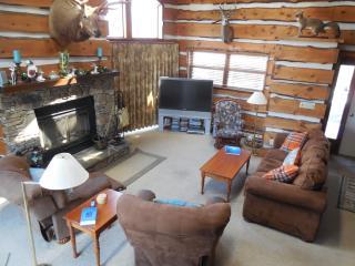Bright 4 bedroom Vacation Rental in Hidden Valley - Hidden Valley vacation rentals