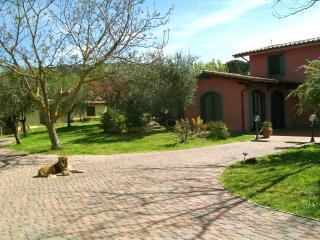 bb aiglicini castel romani gandolfo lago ciampino - Castel Gandolfo vacation rentals