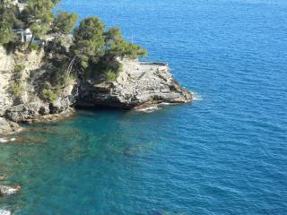 Liguria, Riviera Ligure di Levante, Pieve Ligure - Pieve Ligure vacation rentals