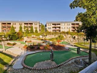 Holiday Inn Club Vacations Oak 'n Spruce Resort - South Lee vacation rentals