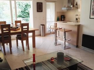 French Riviera: grand 2 pièces 47m² avec piscine - Roquebrune-Cap-Martin vacation rentals