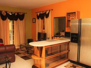 Comfortable Cozy Central Apartment - Kingston vacation rentals