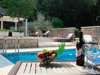 Općina Dubrovnik Holiday Apartment BL********* - Lozica vacation rentals