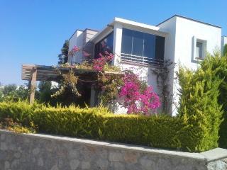 Turgurteis Holiday Villa BL*********** - Akyarlar vacation rentals