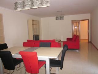 Beautiful 2 bedroom modern apartment - Praia da Rocha vacation rentals