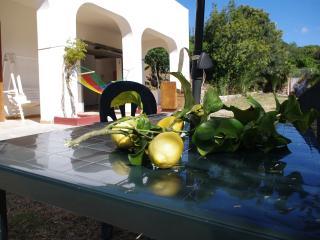 Villa Marina 8 posti letto - Alghero vacation rentals