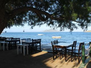 Bodrum Holiday Apartment BL********** - Bodrum vacation rentals
