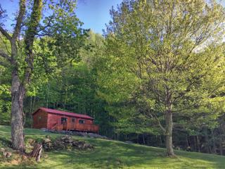 Beautiful Cabin with Deck and Internet Access - Bakersville vacation rentals