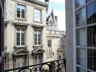 2 bd fairytale view and elevator in historic heart - Bordeaux vacation rentals