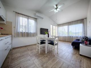 Perfect House with Internet Access and Dishwasher - Vis vacation rentals