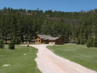 Beautiful 2 bedroom Cabin in Custer - Custer vacation rentals
