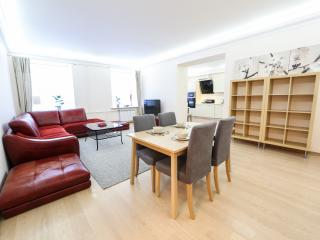 4 Bedroom Luxury Apartment in central location - Saint Petersburg vacation rentals