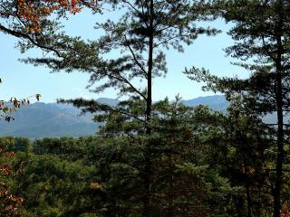 Bear Necessities - Sevierville vacation rentals