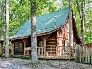 A Cozy Den - Gatlinburg vacation rentals
