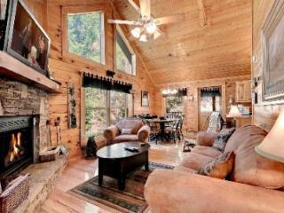 Honey Mountain Fever - Sevierville vacation rentals