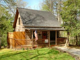 Sleepy Bear - Sevierville vacation rentals