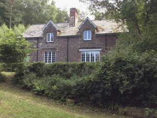 Comfortable 3 bedroom Minehead House with Internet Access - Minehead vacation rentals